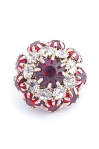 Poplook lamia brooch ruby